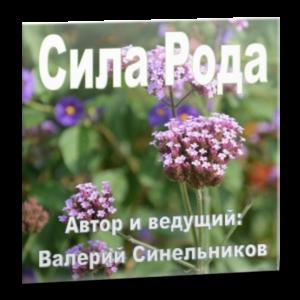sila_roda_sinelnikov
